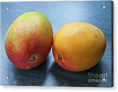 Two Mangos Acrylic Print by Elena Elisseeva