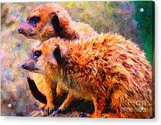 Two Meerkats . Photoart Acrylic Print by Wingsdomain Art and Photography