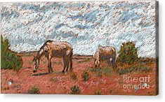 Two Mustangs Acrylic Print by Suzie Majikol Maier