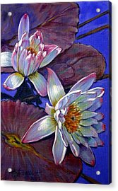 Two Pink Water Lilies Acrylic Print by John Lautermilch