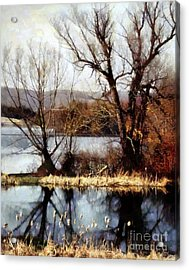 Two Souls Reflect Acrylic Print by Janine Riley
