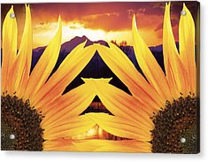 Two Sunflower Sunset Acrylic Print by James BO  Insogna