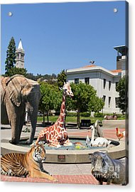 Uc Berkeley Welcomes You To The Zoo Please Do Not Feed The Animals Dsc4086 Vertical Acrylic Print by Wingsdomain Art and Photography