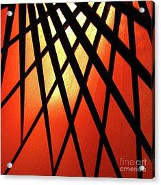 Umbrella 1 Acrylic Print by CML Brown