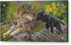 Unconditional Love Acrylic Print by Lucie Bilodeau