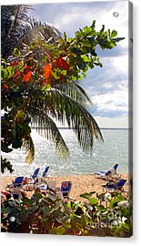 Under The Palms In Puerto Rico Acrylic Print by Madeline Ellis