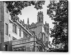 University Of Chicago Collegiate Architecture Acrylic Print by University Icons