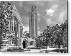 University Of Chicago Saieh Hall For Economics Acrylic Print by University Icons