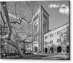University Of Southern California Administration Building Acrylic Print by University Icons