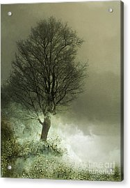 Upon The Windowsill Of Heaven Acrylic Print by Jan Piller