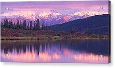 Usa, Alaska, Denali National Park Acrylic Print by Panoramic Images