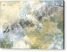 Vanishing Seagull Acrylic Print by Melanie Viola