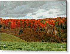 Vardy Settlement Colour Acrylic Print by Allan OMarra