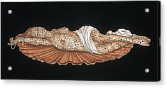 Venus On The Half-shell Acrylic Print by Tina Blondell
