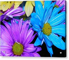 Very Colorful Flowers Acrylic Print by Christy Patino