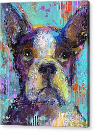 Vibrant Whimsical Boston Terrier Puppy Dog Painting Acrylic Print by Svetlana Novikova