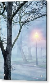 Victory Park In Fog Acrylic Print by Terry Davis