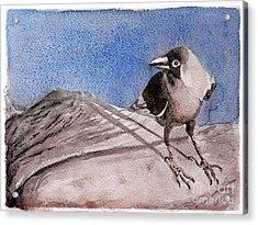View Acrylic Print by Jasna Dragun