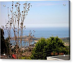 View Of Pillar Point Acrylic Print by Carolyn Donnell