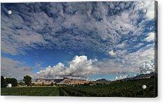 Vineyard Acrylic Print by Jerry LoFaro