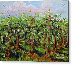 Vineyard Of Chateau Meichtry - Ellijay Ga - Plein Air Painting Acrylic Print by Jan Dappen