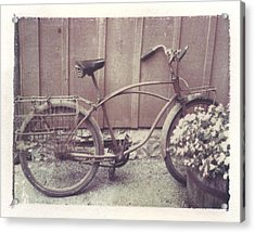 Vintage Bicycle Acrylic Print by Jane Linders