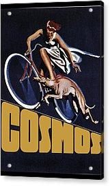 Vintage Cosmos Greyhound Bicycle Acrylic Print by Daniel Hagerman