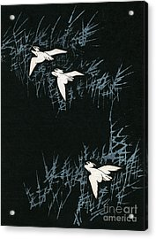 Vintage Japanese Illustration Of Three Cranes Flying In A Night Landscape Acrylic Print by Japanese School