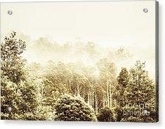 Vintage Winter Woodland Acrylic Print by Jorgo Photography - Wall Art Gallery