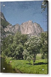 Vintage Yosemite Acrylic Print by Teresa Mucha