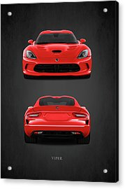 Viper Acrylic Print by Mark Rogan
