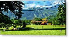 Vista Del Ferrocalejo En Rincon Grande Acrylic Print by Bibi Romer