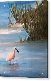 Wading Acrylic Print by Betty Pimm