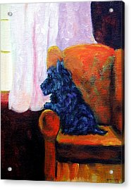 Waiting For Mom - Scottish Terrier Acrylic Print by Lyn Cook