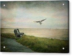 Waiting On A Friend Acrylic Print by Fran J Scott