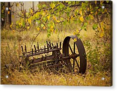 Waiting On My Other Wheel Acrylic Print by Toni Hopper
