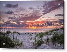 Wake Up Call Acrylic Print by Steve DuPree