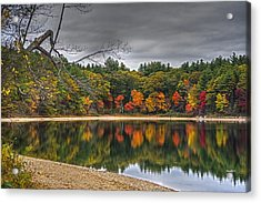Walden Pond Fall Foliage Concord Ma Acrylic Print by Toby McGuire