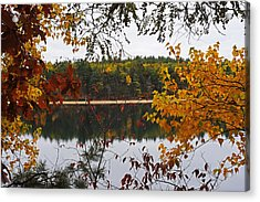Walden Pond Fall Foliage Leaves Concord Ma Acrylic Print by Toby McGuire