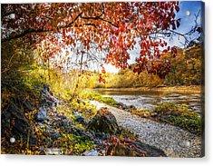 Walk Along The River Acrylic Print by Debra and Dave Vanderlaan