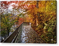 Walk Into Autumn Acrylic Print by Debra and Dave Vanderlaan