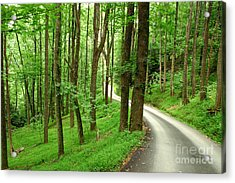 Walking On A Country Road - Appalachian Mountain Backroad Acrylic Print by Matt Tilghman