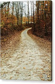 Wandering Road Acrylic Print by Russell Keating