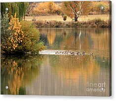 Warm Autumn River Acrylic Print by Carol Groenen