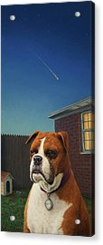 Watchdog Acrylic Print by James W Johnson