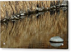 Water Colored  Acrylic Print by Steven Milner