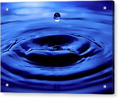 Water Drop Acrylic Print by Eric Ferrar