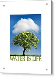 Water Is Life Acrylic Print by Mal Bray