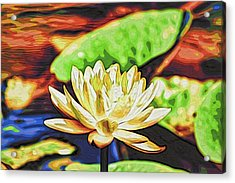 Water Lily Acrylic Print by Alexandre Ivanov