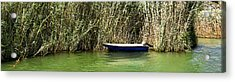 Water Scene Pano Acrylic Print by Svetlana Sewell